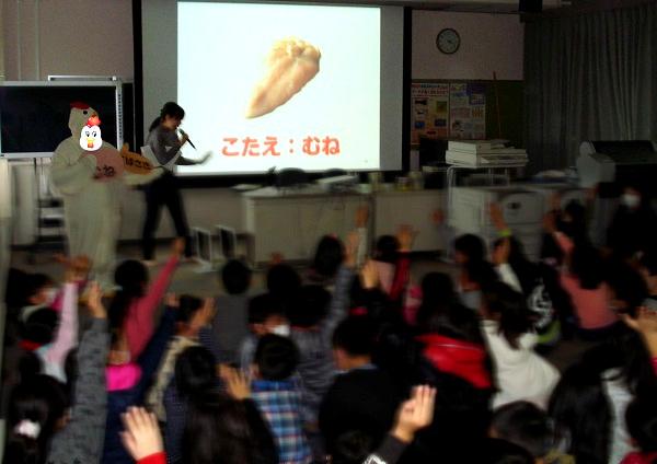 小学校での鶏肉授業2