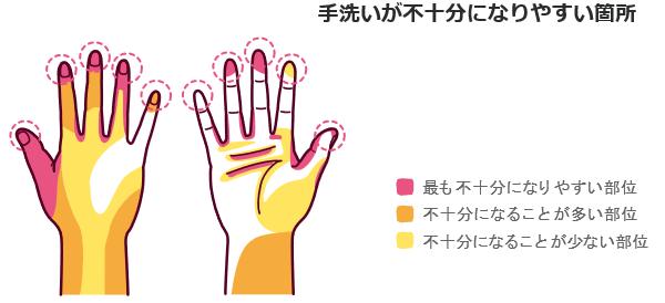 手洗いのポイント