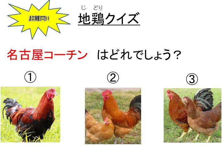 地鶏クイズ
